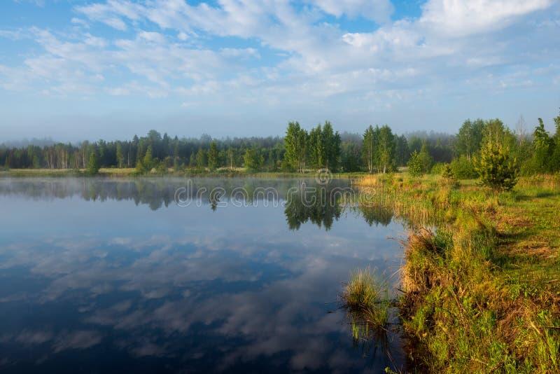 jeziorny mglisty ranek zdjęcie stock