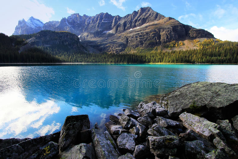 Jeziorny O'Hara, Yoho park narodowy, Kanada obrazy stock