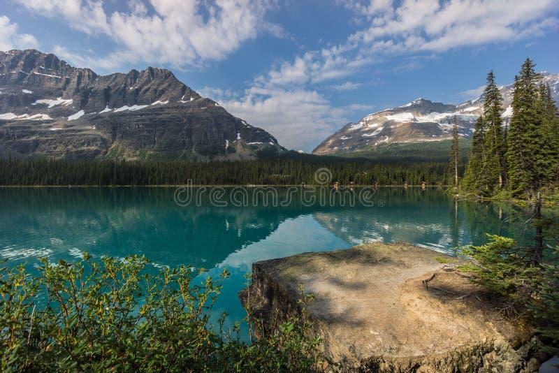 Jeziorny O'Hara, Yoho park narodowy, Kanadyjskie Skaliste góry, Brytyjski Colum obraz stock