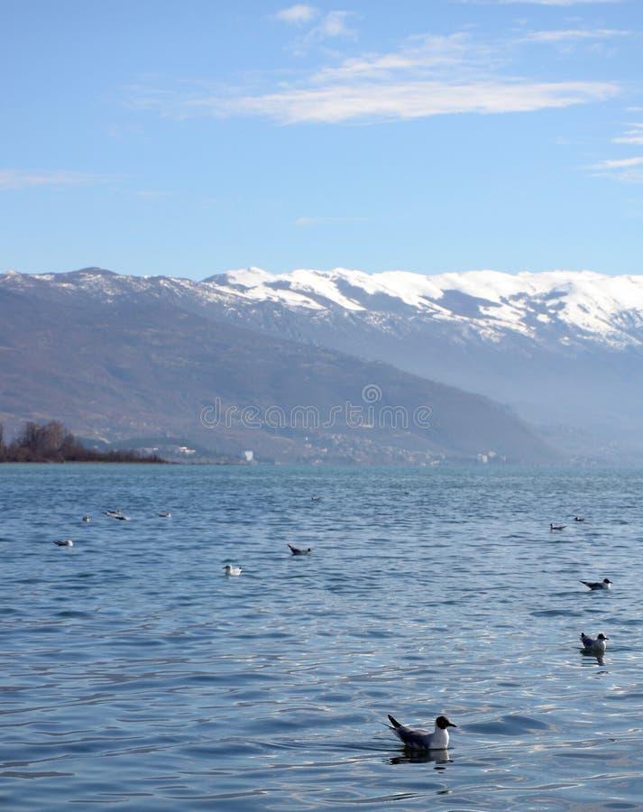 Jeziorny Ohrid Macedonia obraz stock