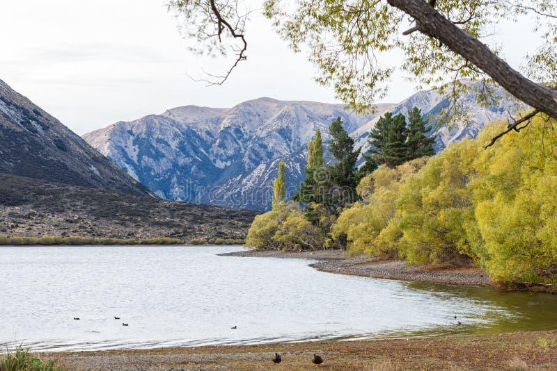 Jeziorny Pearson Arthur przepustki park narodowy, Nowa Zelandia obrazy stock