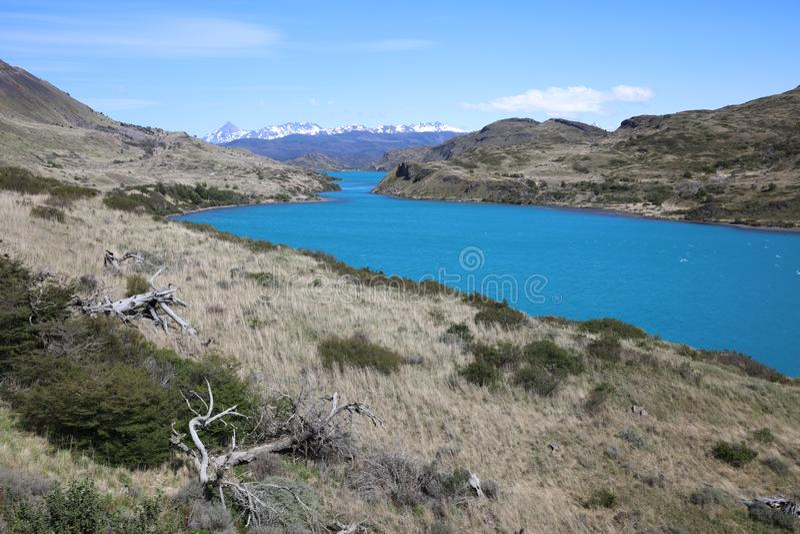 Jeziorny Pehoe w Torres Del Paine parku narodowym patagonia Chile fotografia royalty free