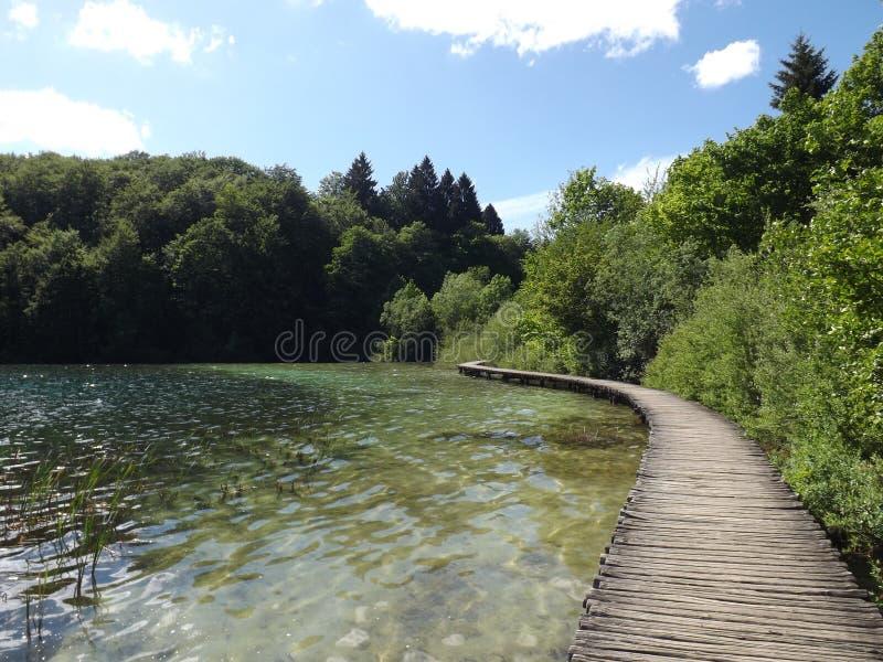 Jeziorny Plitvice fotografia royalty free