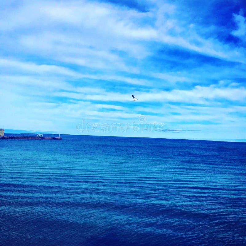 Jeziorny przełożony fotografia royalty free