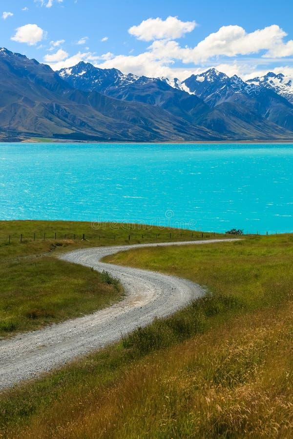 Jeziorny Pukaki, Południowa wyspa, Nowa Zelandia obraz royalty free