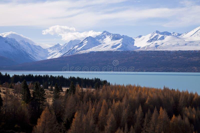Jeziorny Pukaki, Południowa wyspa, Nowa Zelandia fotografia stock