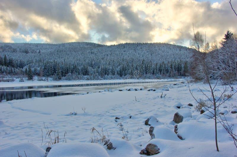 Jeziorny Schluchsee przy półmrokiem w zimie czarny las Germany obraz royalty free