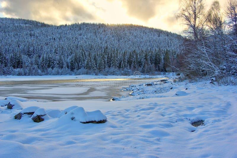 Jeziorny Schluchsee przy półmrokiem w zimie czarny las Germany fotografia royalty free
