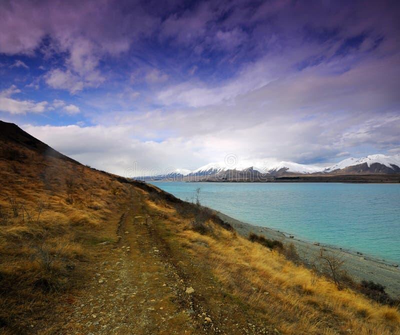 Jeziorny Tekapo obraz stock
