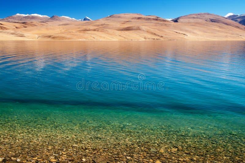 Jeziorny Tsomoriri zdjęcia royalty free