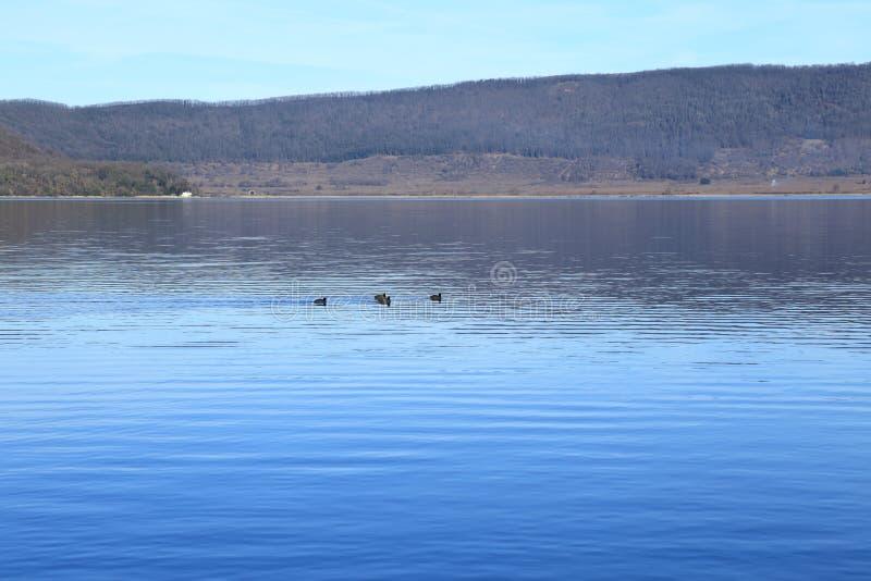 Jeziorny Vico zdjęcia stock