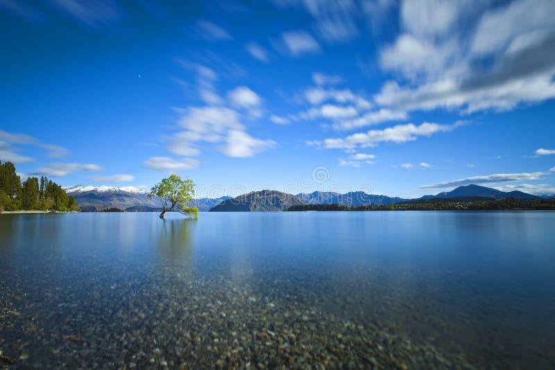 Jeziorny Wanaka zdjęcie stock