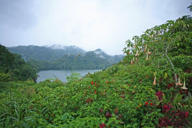 Jeziorny widok w wzgórzach Sibulan w Filipiny zdjęcie royalty free
