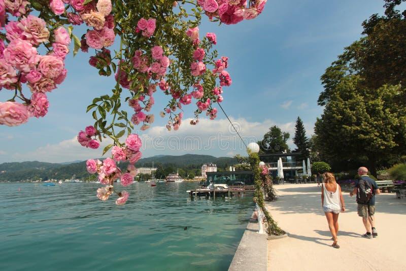 Jeziorny Woerthersee podczas lata zdjęcie royalty free