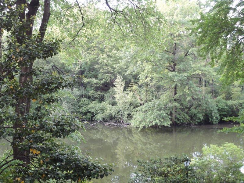jezioro środkowy park zdjęcie royalty free