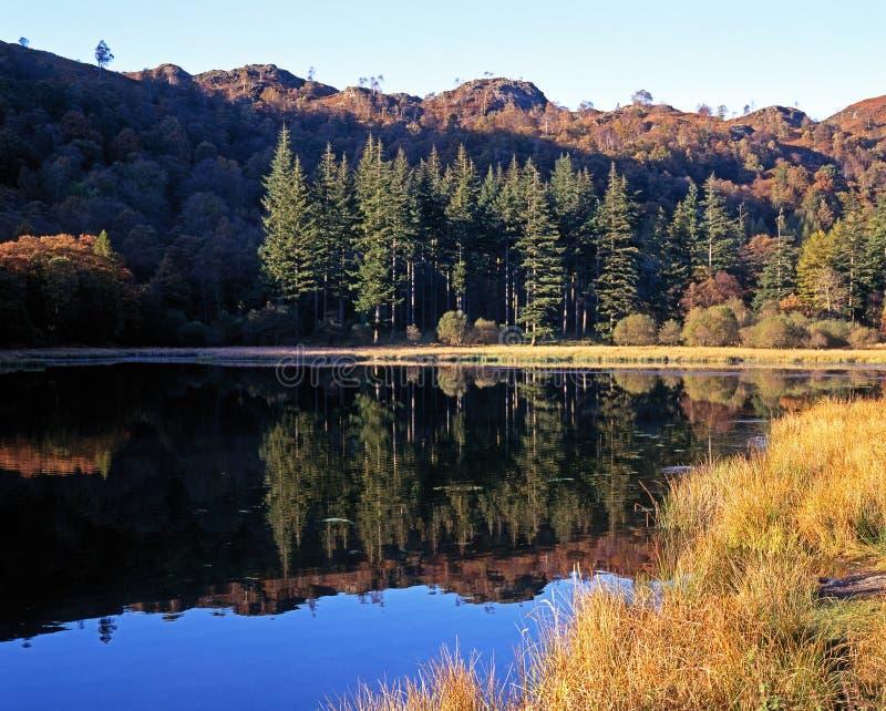 Jezioro, Hawkeshead, Cumbria. fotografia royalty free