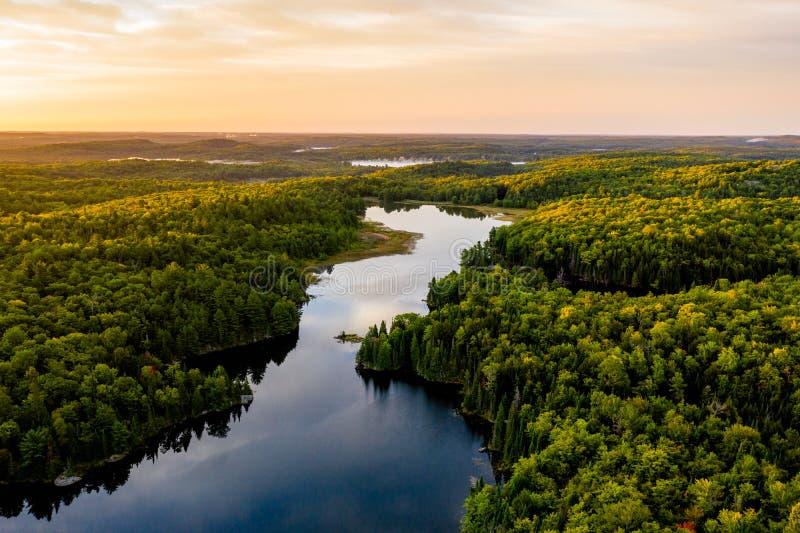 Jezioro i las w ranku z góry zdjęcie stock