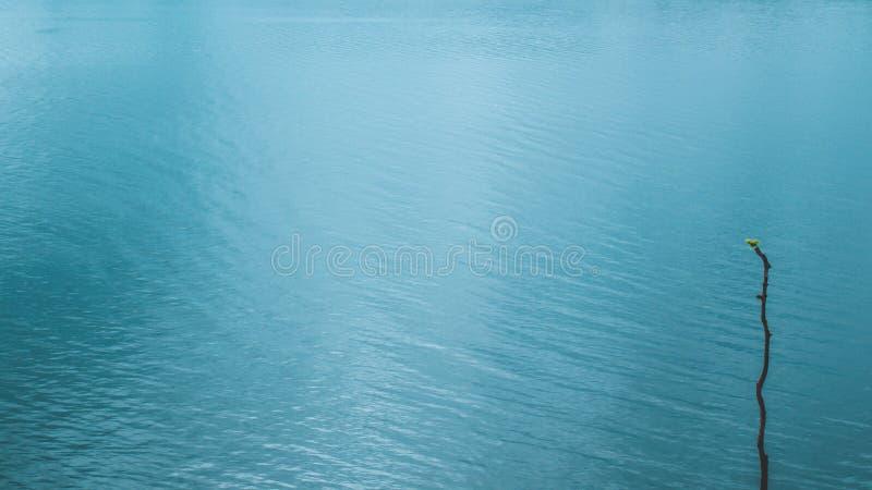 Jezioro i odbicie na powierzchni wody, ruch falujący tekstura ruchu przez miękki wiatr mglista scena poranna niebieski zdjęcie stock