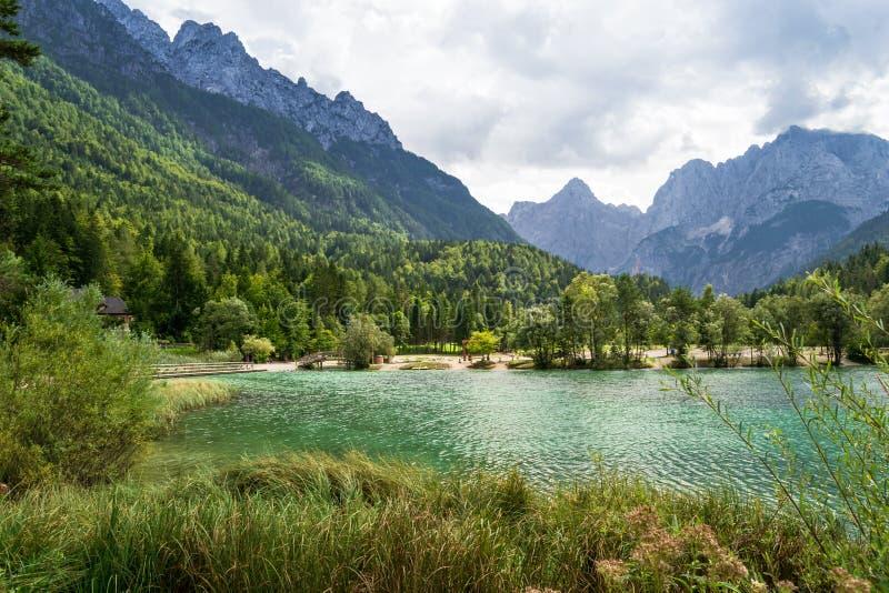 Jezioro Jasna jest oszaÅ'amiajÄ…cym jeziorem alpejskim niedaleko Kranjska Gora, w Parku Narodowym Triglav, SÅ'owenia zdjęcie royalty free