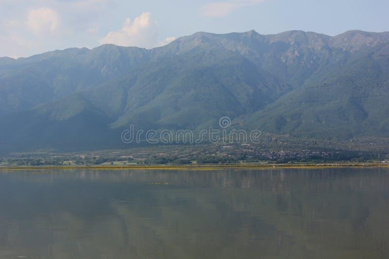 Jezioro Kerkini Serres Grecja obraz stock