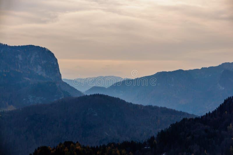 Jezioro Krwawiący: Slovenia Jedyny kościół Otaczający górami obrazy royalty free