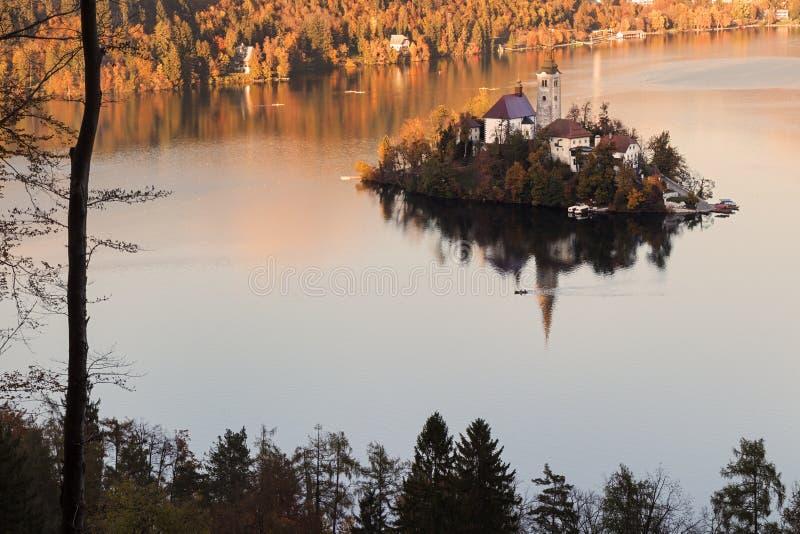 Jezioro Krwawił Blejsko jezero zdjęcie royalty free