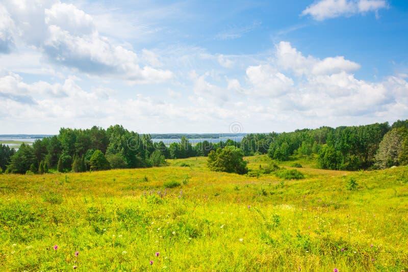 Jezioro, las, pole, duże chmury fotografia royalty free