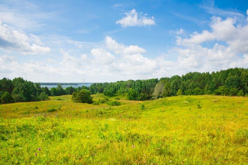 Jezioro, las, pole, duże chmury zdjęcia stock