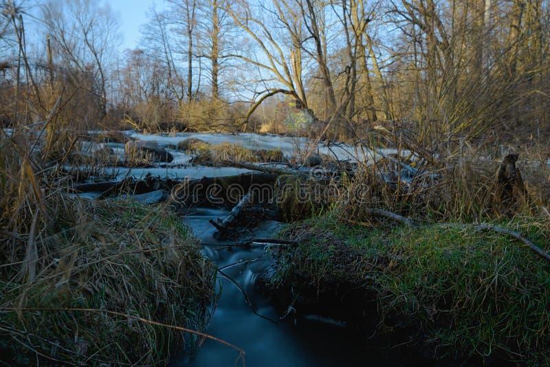 Jezioro longtime fotografia royalty free