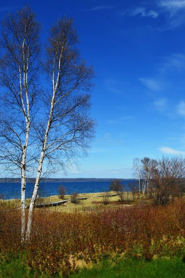 Jezioro Michigan krajobraz obraz royalty free