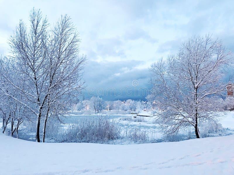 jezioro, mrożone fotografia royalty free