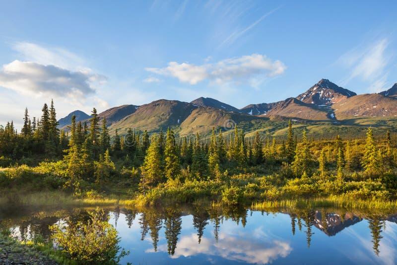 Jezioro na Alaska zdjęcia stock