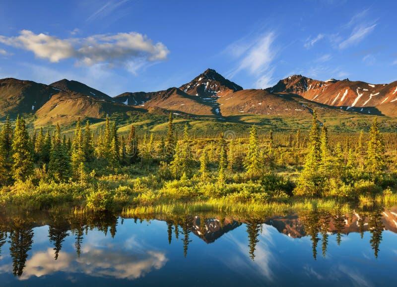 Jezioro na Alaska obraz stock