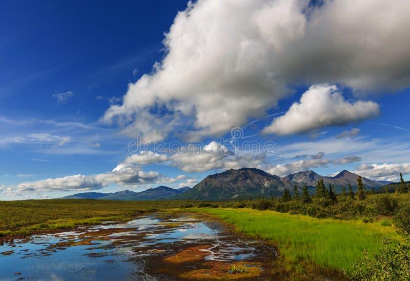 Jezioro na Alaska obrazy stock