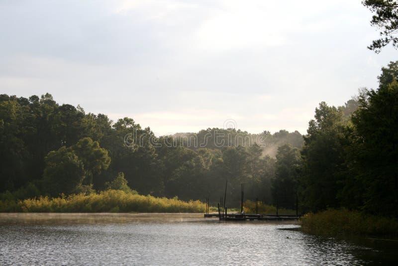 Jezioro o sosny wschód słońca zdjęcie stock
