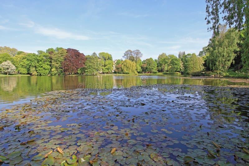 Jezioro Parkowy Hannover obraz royalty free