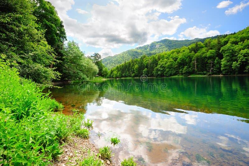 jezioro piękny park zdjęcie stock