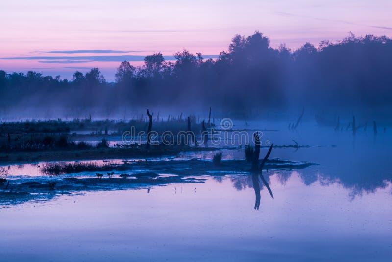 Jezioro przy świtem pokazuje refections zdjęcie stock