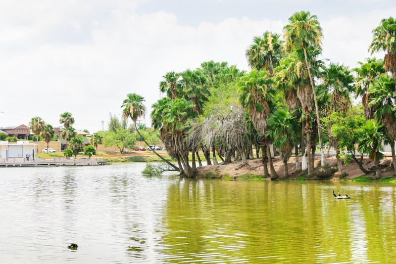 Jezioro przy Matamoros, Meksyk obraz stock