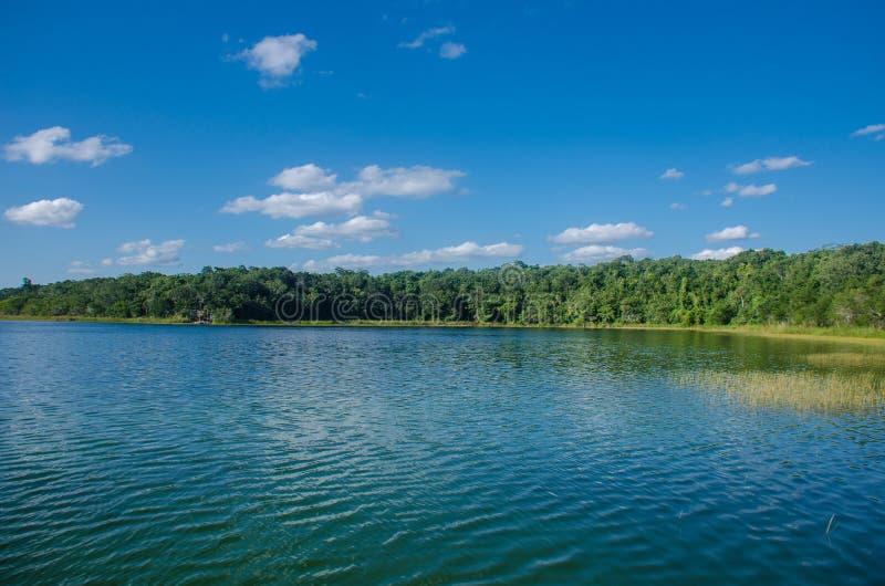 Jezioro przy Punta Lagunas, Coba, Meksyk fotografia stock
