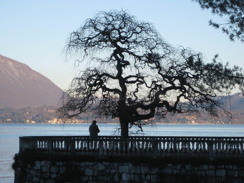 Jezioro przy zmierzchem z starym człowiekiem obrazy royalty free