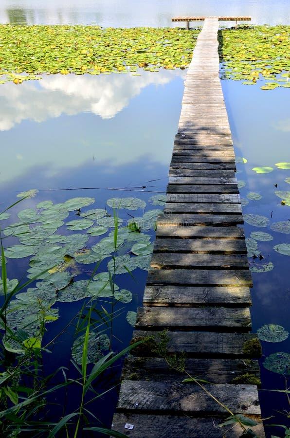 Jezioro, quay i wodne leluje, fotografia stock