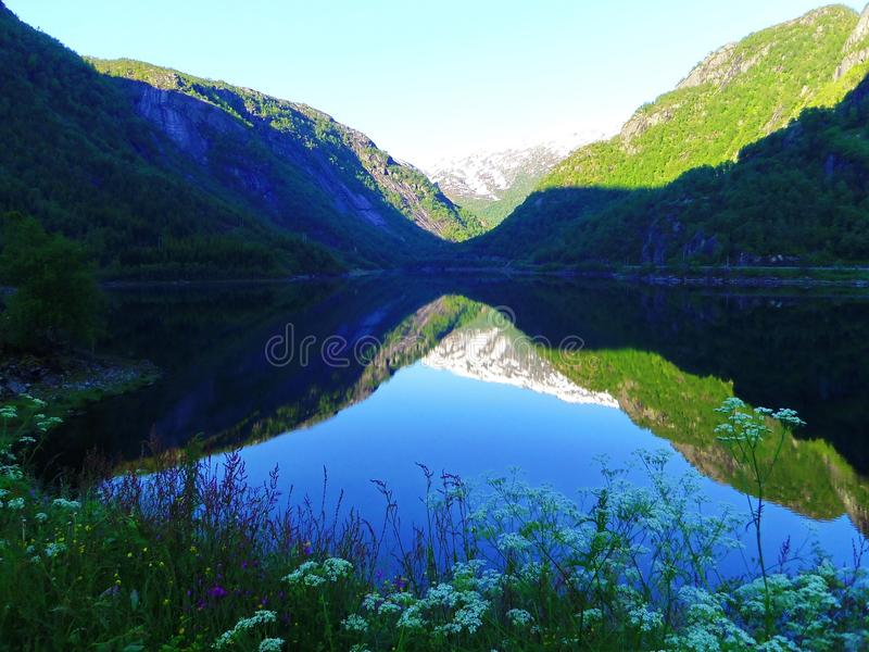 Jezioro, rośliny i piękne góry, Norwegia fotografia stock