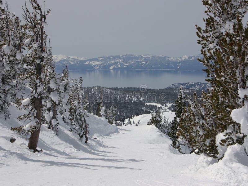 jezioro tahoe obraz royalty free