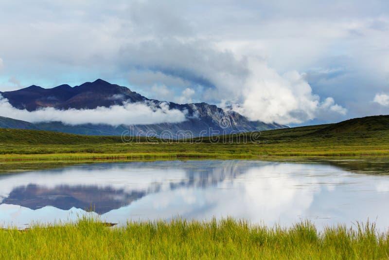 Jezioro w Alaska obraz royalty free