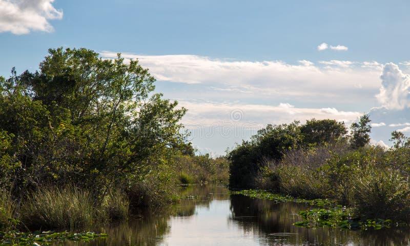 Jezioro w błota safari parku zdjęcia royalty free
