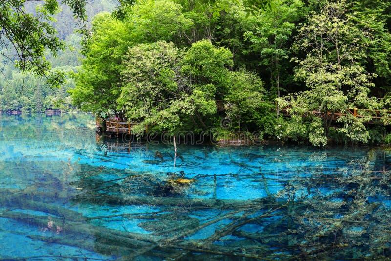 Jezioro w jiuzhaigou parku narodowym, Sichuan, porcelana obrazy stock