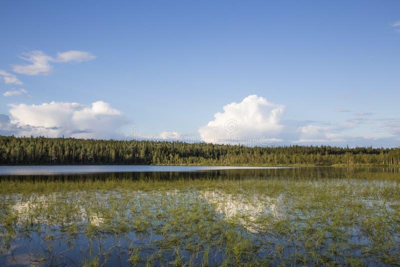 Jezioro w konu Lapland obrazy royalty free