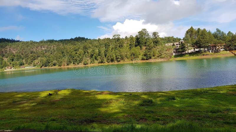 Jezioro w lesie 3 zdjęcia royalty free