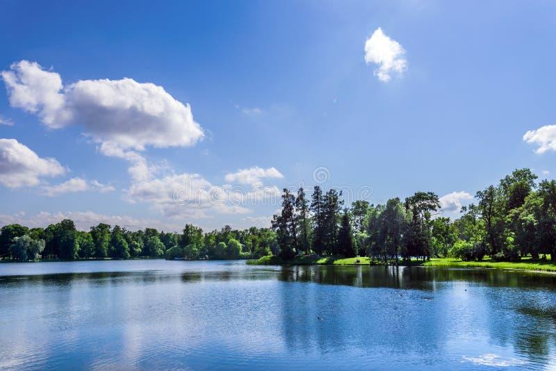 Jezioro w naturalnym parku z drzewami r na bankach obrazy stock